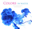 canvas print picture - Acrylic colors in water. Abstract background.
