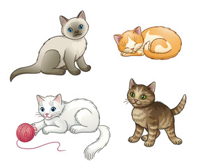 Set of pretty vector kittens