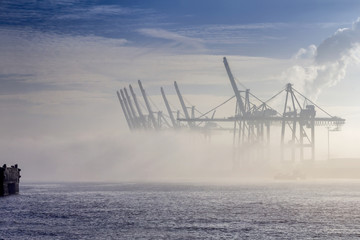 Container Cranes in the Fog