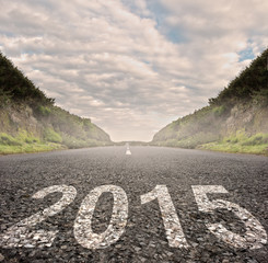 year 2015 painted on asphalt road