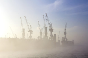 silhouette of cranes in fog
