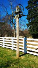Bell on Farm