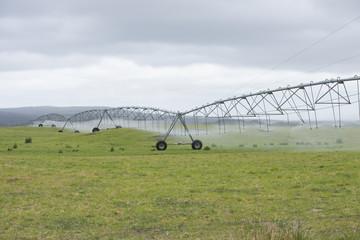 Irrigation by Pivot sprinkler on grass field