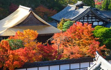 京都 南禅寺 天授庵の紅葉