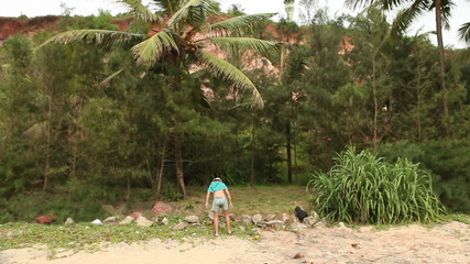 man tries to knock down a coconut from green tree in tropical fo