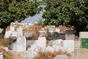Cemetery in Meknes