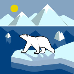 Polar bear on an ice floe, polar landscape.