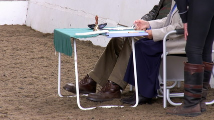 Horse dressage competition judges and rider