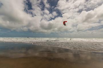 kitesurfer on Muriwai beach, New Zealand