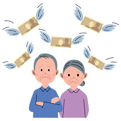 シニア カップル お金