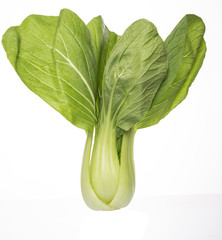 Chinese cabbage or bok choy over white background