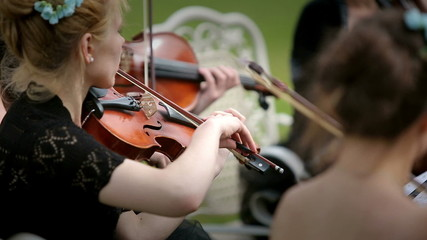 Musical quartet. Three violinists and cellist playing music.