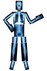 Human skeleton present something (Whole body )