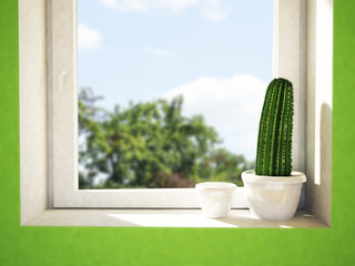 cactus on the windowsill