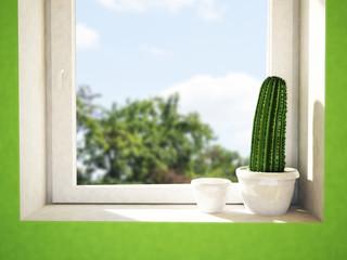 cactus on the windowsill