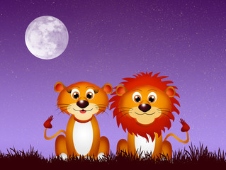 Lions couple in the moonlight