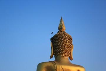Behind Buddha.