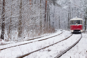 Railway in forest