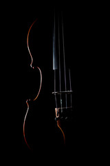 Violin strings musical instruments