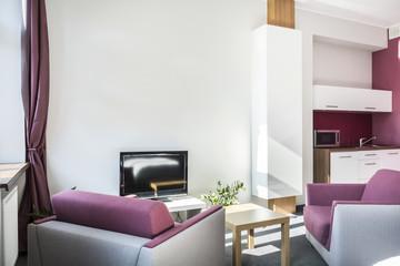 Modern studio apartment with violet details
