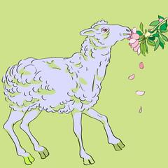 sheep eating flowers