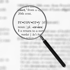 Recovery Dictionary Definition