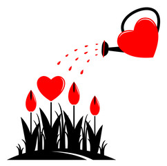 heart flowers and watering can