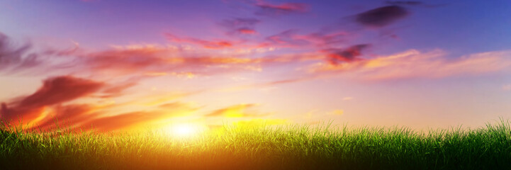 Green grass on sunset sunny sky. Panorama, banner