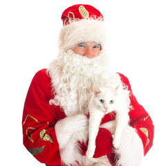 Santa Claus holding white cat. Isolated on white.