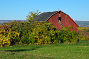 Hidden Red Barn