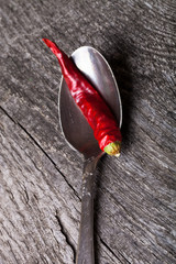 red hot chili peppers in German silver spoon on old wooden table