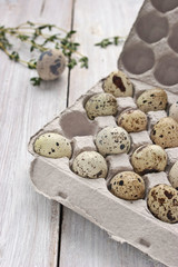 Quail eggs in the cardboard packing on the white table