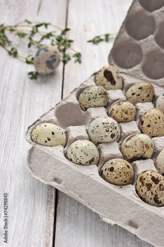 canvas print picture Quail eggs in the cardboard packing on the white table