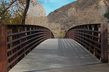 Pedestrian Bridge - Diminishing Perspective