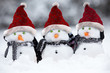 Snowmen with Christmas hats - 74299424
