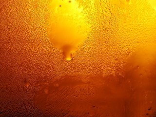 beer fresh cold