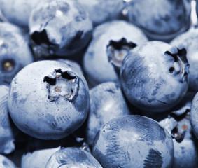 Fresh group of ripe blueberries
