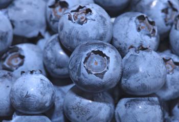 Fresh group of blueberries