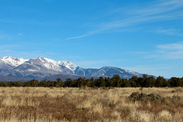 Brown Prairie and Snow Capped Mountain
