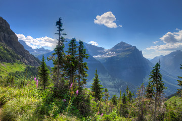 MT-Glacier National Park-Highline Trail
