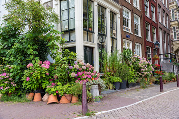 Beautiful house in Amsterdam