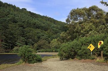 Lifebuoy and warning sign on the lake.