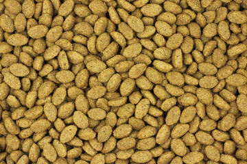 dry cat food abstract background