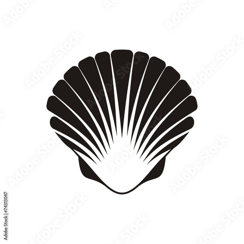 Scallop seashell icon - 74313047