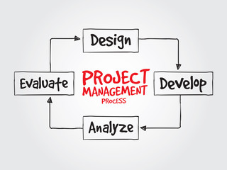 Project management process diagram for presentations and reports