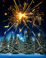 snow covered spruce trees and sparkler - christmas