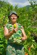 Gardener with cucumbers 1