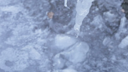 Dripping Icicle