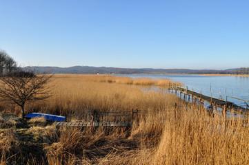 Boddenlandschaft Selliner See, Seedorf bei Sellin, Rügen