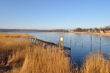 Boddenlandschaft in Seedorf bei Sellin auf Rügen